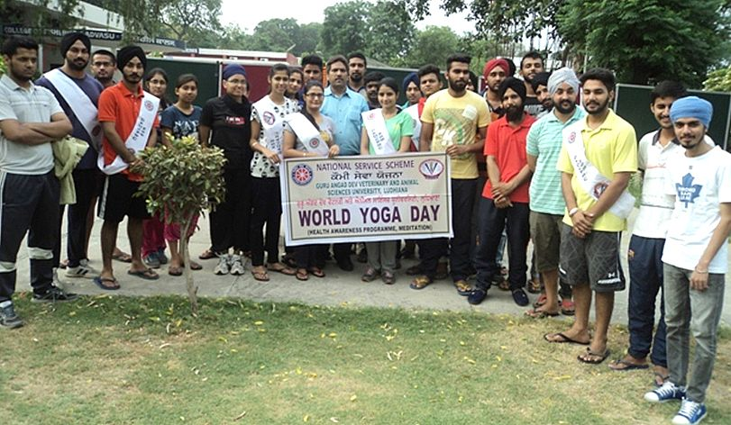 NSS Cell of GADVASU celebrates International Yoga Day on 21st June,2015