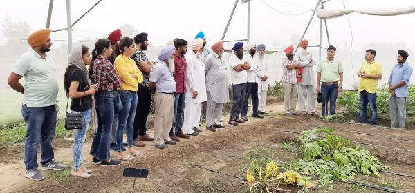 KVK, Mohali organizes One week vocational training on Horticulture
