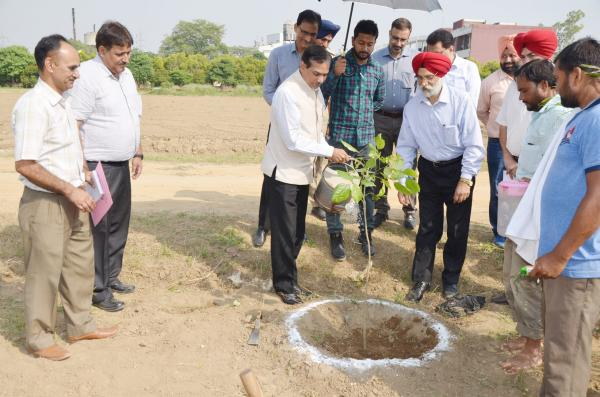 Dr. A. S. Nanda, Vice Chancellor and Dr. Trilochan Mohapatra, DG, ICAR plant the  tree on the visit of University on dated 8-10-2018