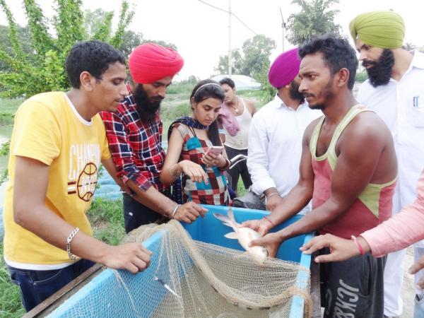 Aspiring Candidates Acquire Fish Farming Skills at Vet Varsity