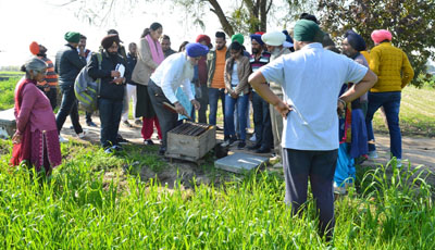 KVK, S.A.S Nagar onducts vocational training course on Beekeeping on 06-02-2020