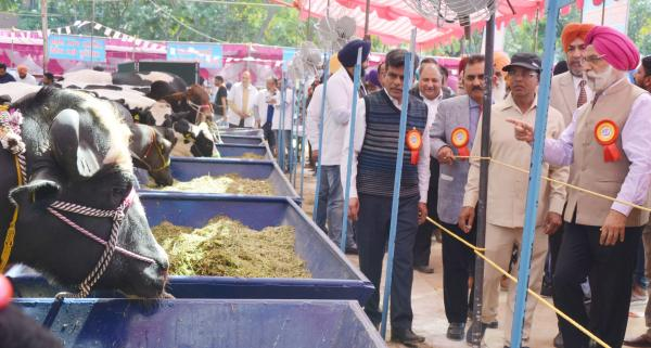 Dr. A. S.  Nanda, Vice Chancellor and other officers of the University visited the exhibit stalls of 26th Pashu Palan Mela