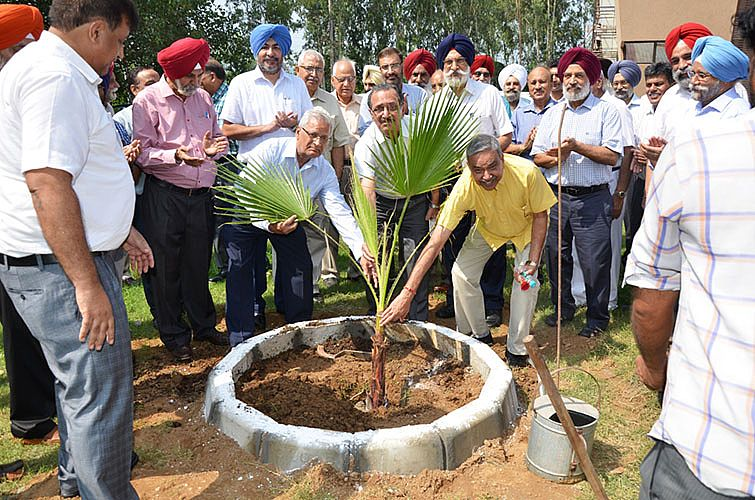 r. A.S Nanda, Vice-Chancellor, GADVASU and other faculty implanting the palm trees on occasion of Teachers Day