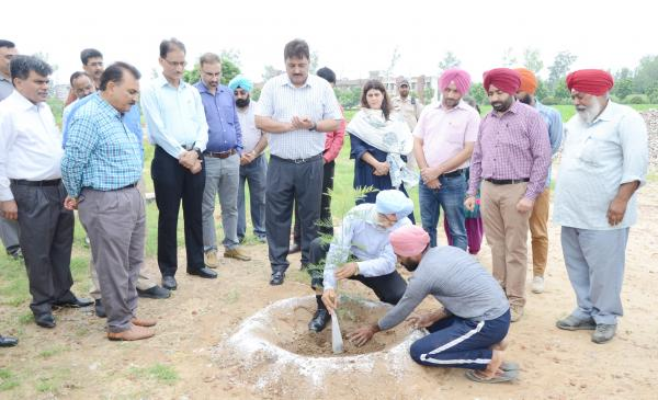 Dr. A. S. Nanda, Vice Chancellor and other officer of vet varsity dedicates Plantation Drive to Guru Nanak Sahib anniversary
