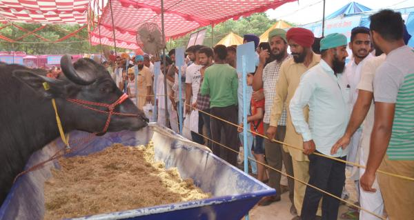 Farmers visited the Pashu Palan Mela on 2nd day(21-9-2018)