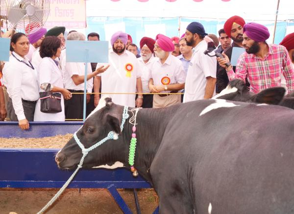 Capt. Amrinder Singh, Chief Minister of Punjab and Vice Chancellor visited the stalls in Pashu Palan Mela on 21-09-2019