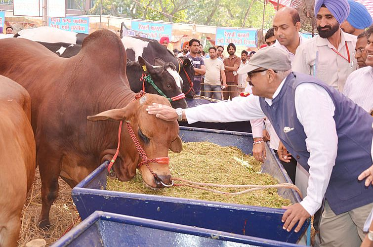 24th Pashu Palan Mela Starts at Veterinary Varsity on 23rd March, 2018