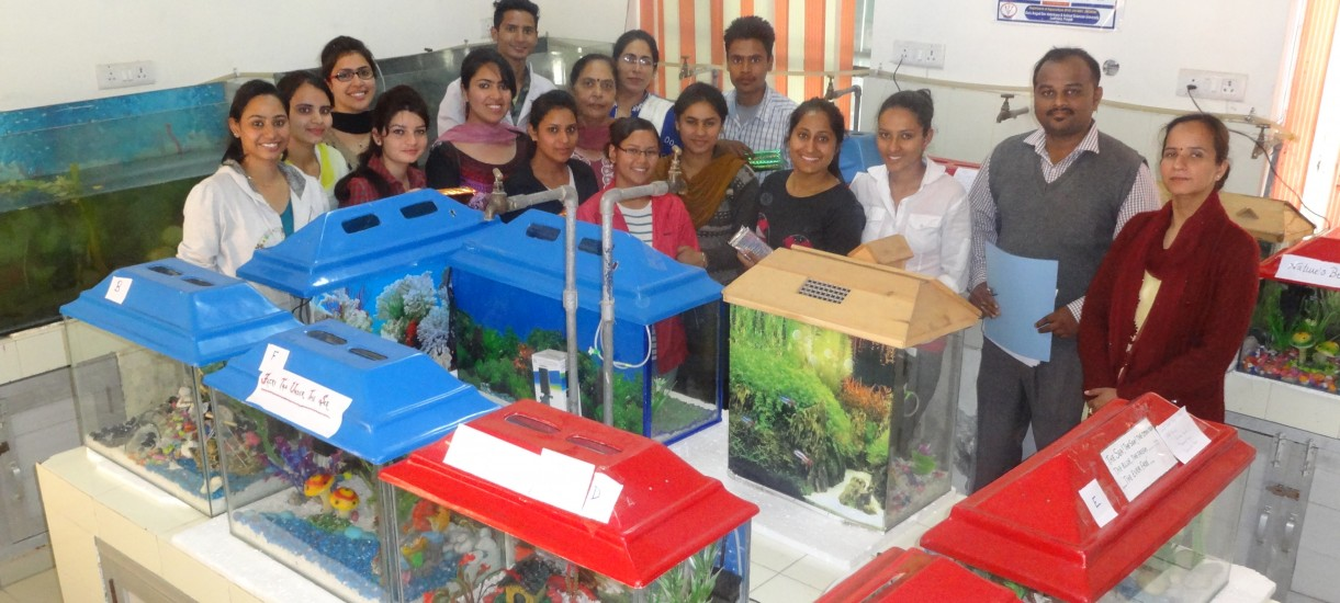 Aquarium fabrication by B.F.Sc. students under inp