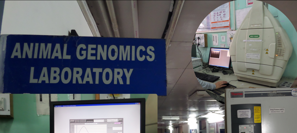 Genomics facility