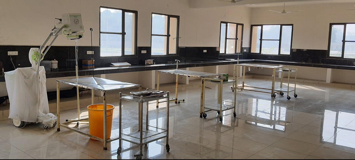 Teaching Veterinary Clinic Complex OPD