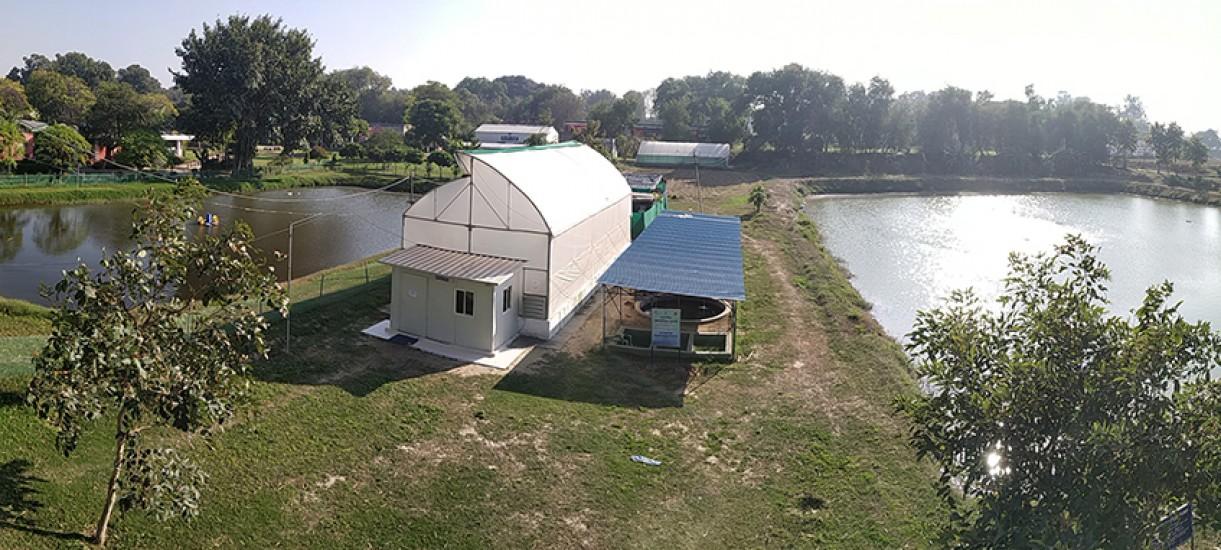 Fisheries Farm